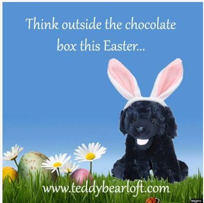Great easter gifts stuff your own teddy bear kits start at just great easter gifts stuff your own teddy bear kits start at just 12 we negle Images