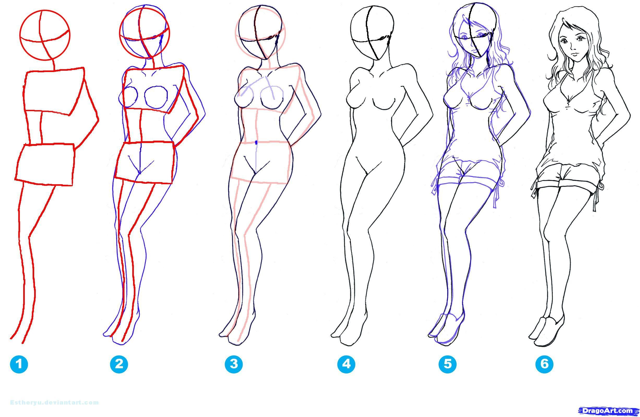 How To Draw Females Step By Step Figures People Free Online Girl Face Drawing Step By Step Drawing Body Drawing Tutorial