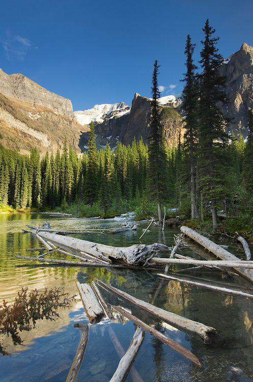Canada Photo - Wenkchemna Peaks and Moraine Lake,Banff