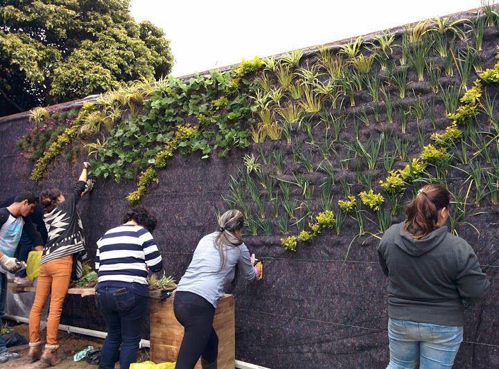 Pourquoi installer un jardin vertical dans notre ca - Comment faire un jardin vertical ...