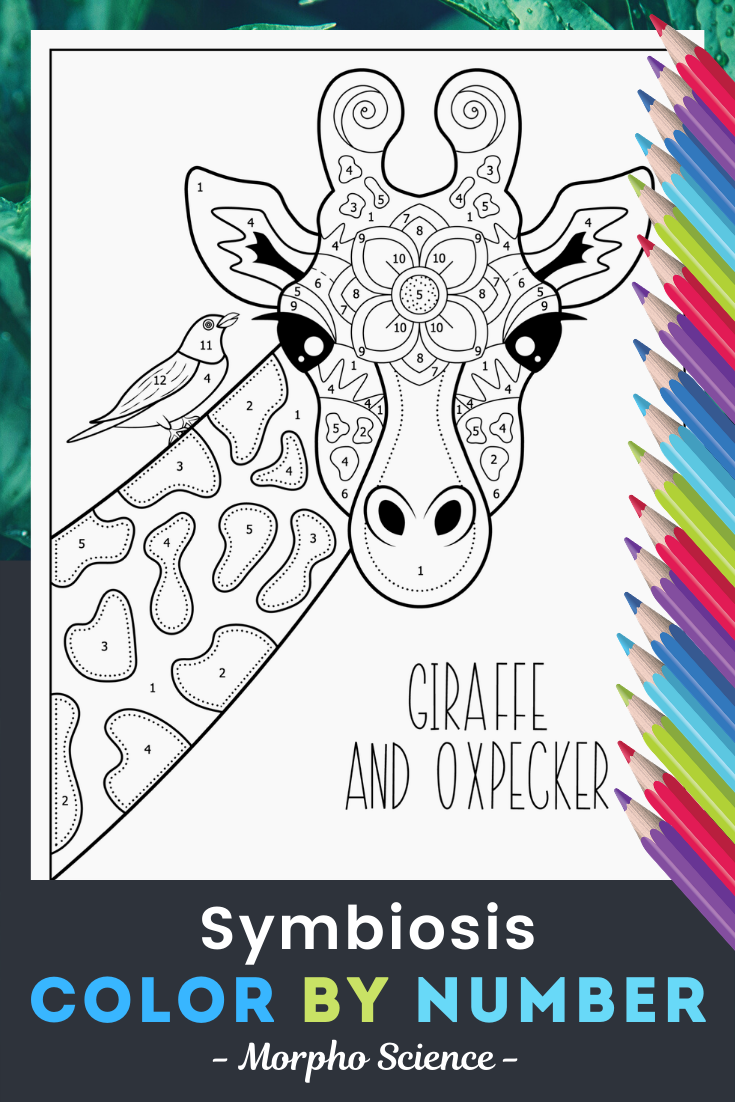 Symbiosis Color By Number Giraffe Coloring Pages Symbiosis Coloring Pages [ 1102 x 735 Pixel ]