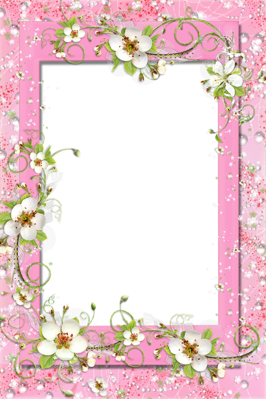 Transparent Pink PNG Frame with Flowers | Photo Frames | Pinterest ...