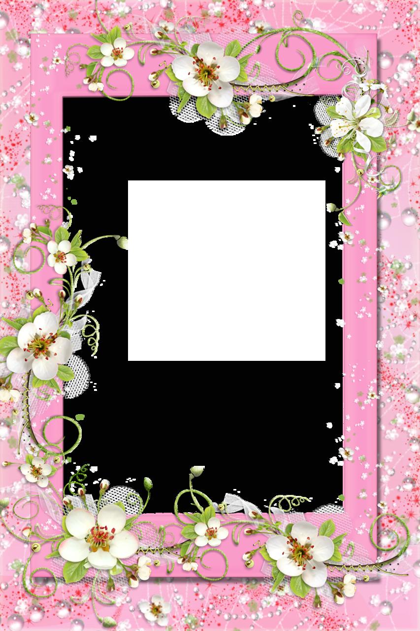 Transparent Pink PNG Frame with Flowers Flower frame