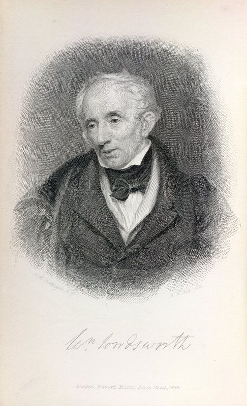 romanticism in wordsworth William wordsworth was the central figure in the english romantic revolution in poetry his contribution to it was threefold first, he formulated in his poems and his essays a new attitude toward nature.