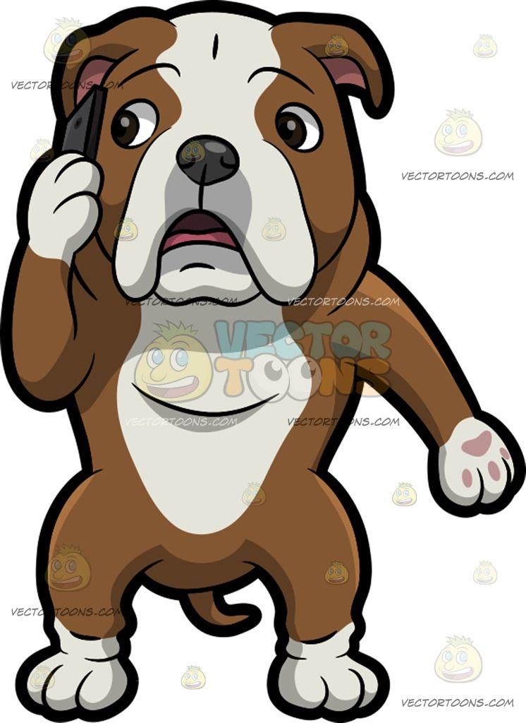 An English Bulldog Making A Phone Call English Bulldog Bulldog