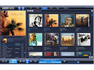 Music Organizer application one of the Windows best MP3