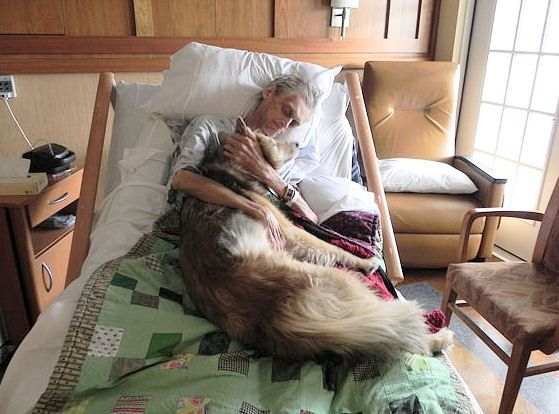 A dying man holding his best friend. He lived homeless in Iowa with his dog in a car. When he became terminally ill and placed in hospice, his only request was to hold his dog one last time before passing on. Two souls quietly saying their goodbyes.