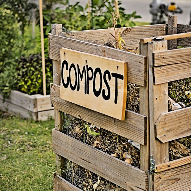 6 Ways To Turn Your House Into A Productive Home Environment: Gardening & Landscape Ideas