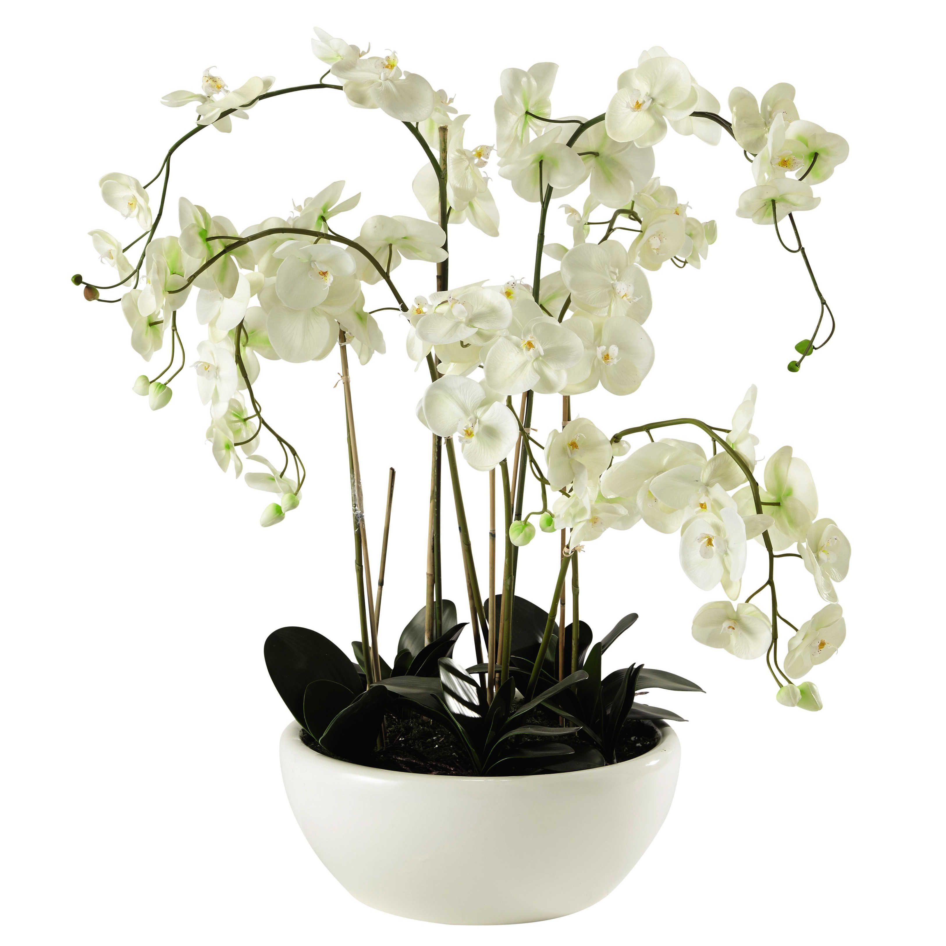 orchid e artificielle en pot h 98 cm orchid es artificielles artificiel et orchid es. Black Bedroom Furniture Sets. Home Design Ideas