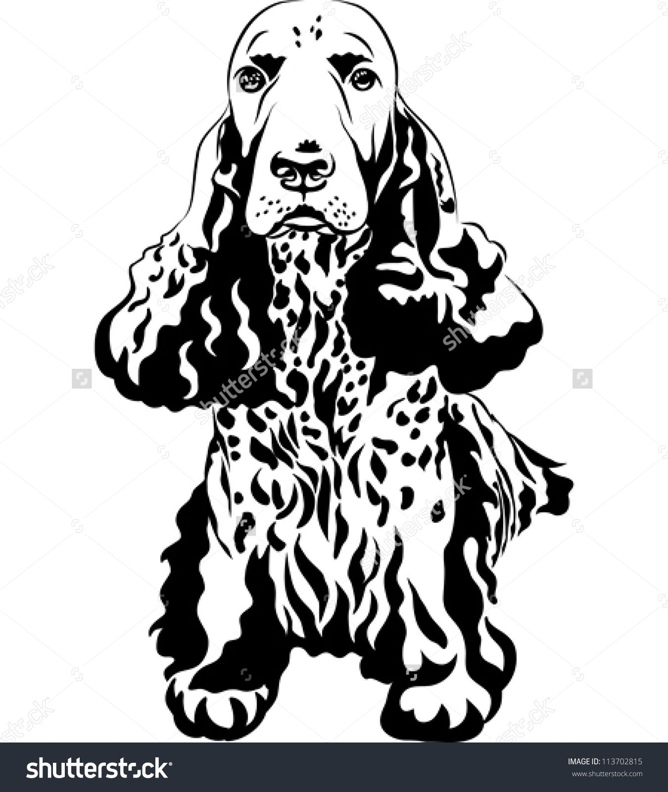 stock-vector-vector-black-and-white-sketch-funny-dog-breed-english-cocker-spaniel-sitting-113702815.jpg (1350×1600)