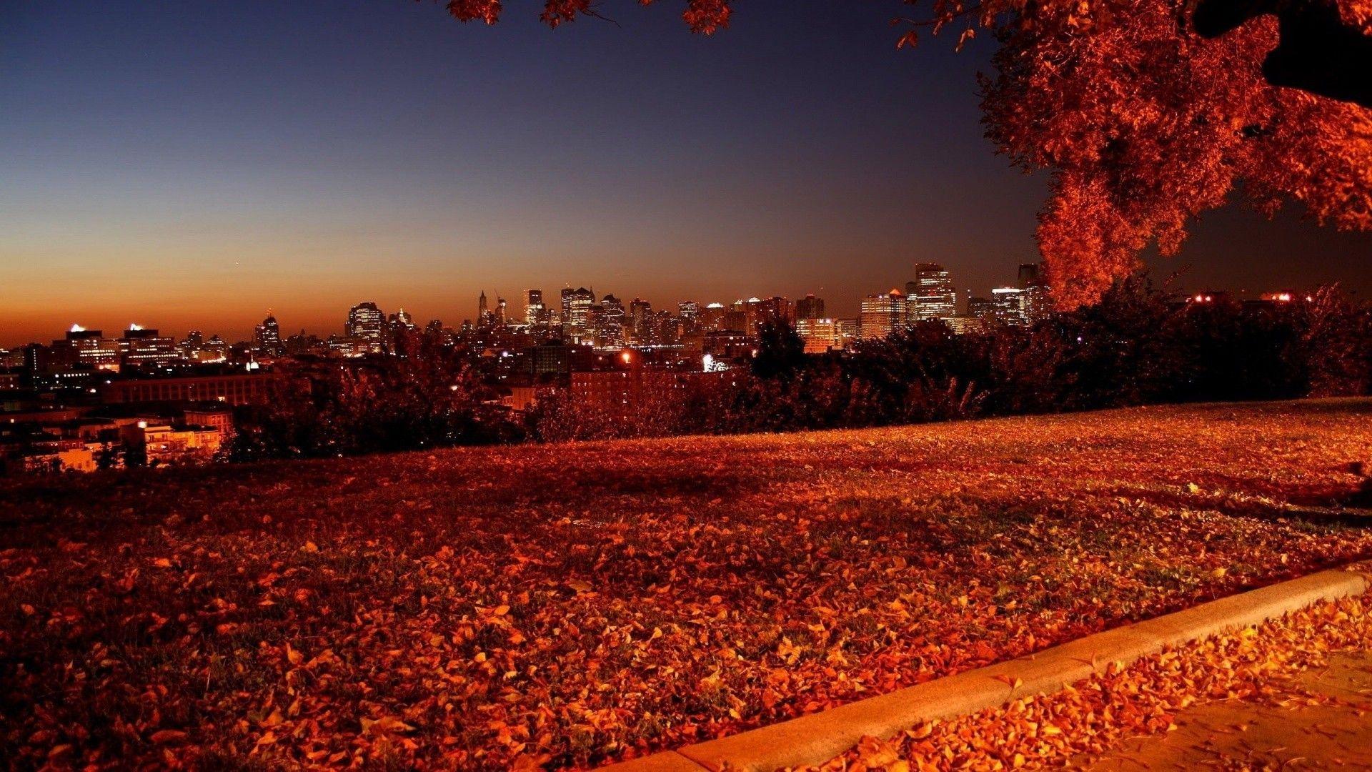 Autumn night picture wallpaper