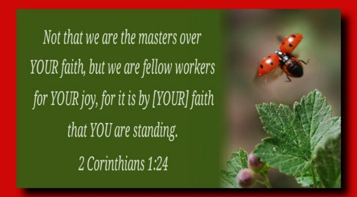 Not that we are the masters over YOUR faith, but we are fellow ...