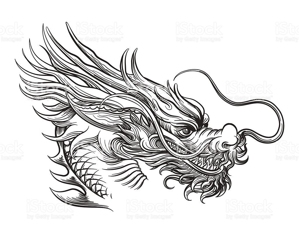 Hand Drawn Chineese Dragon Isolated On White Background Vector Dragon Head Drawing Dragon Illustration Dragon Head Tattoo