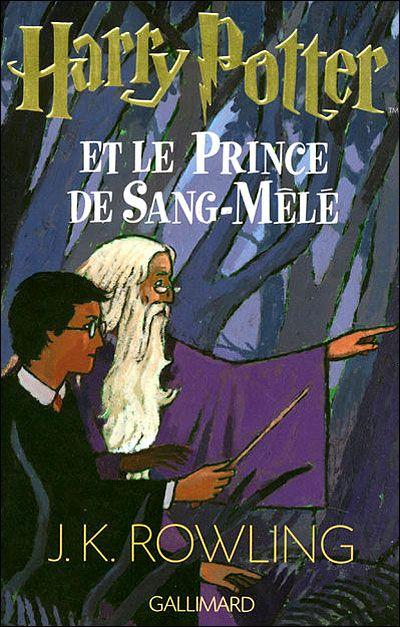 Le Sixieme Livre De La Serie Disponible En Francais En