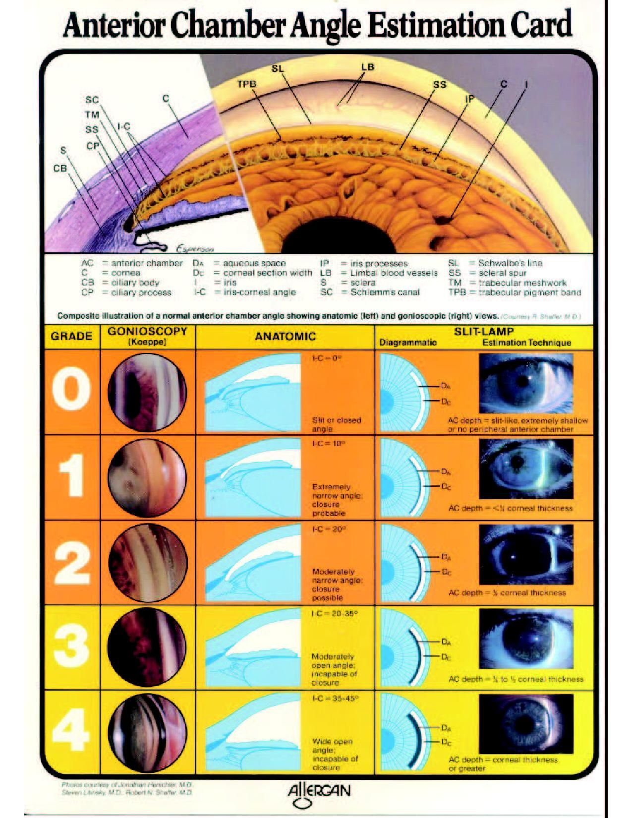 Pin By Nicole Rusch On Ophthalmology Optometry Optometry School Eye Health