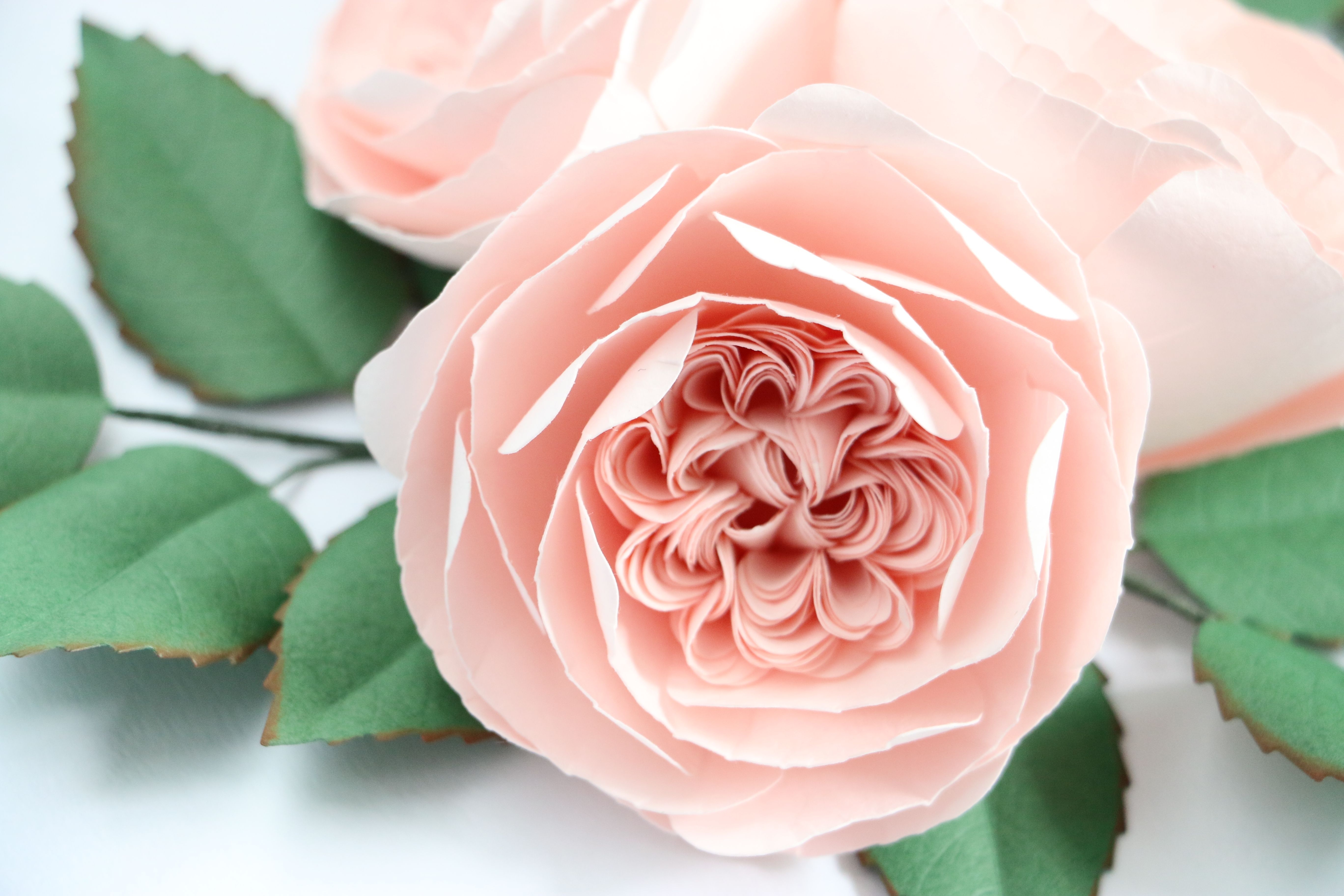 Diy Paper Flower Juliet Rose Httpblogver101kaikei