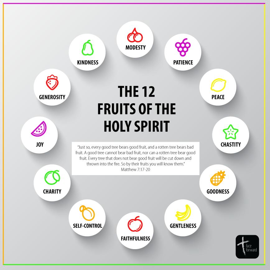 The 12 Fruits of the Holy Spirit | Catholic Infographic