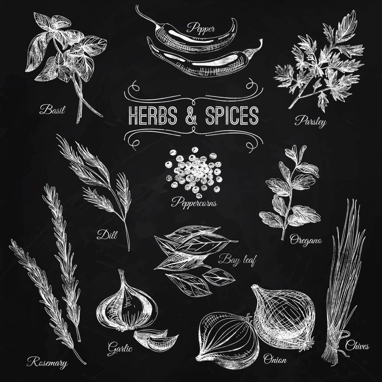 kitchen chalkboard print cook food herb spices houseplants flavor