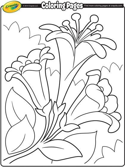 Easter Lilies Ii On Crayola Com Crayola Coloring Pages Easter Coloring Pages Spring Coloring Pages
