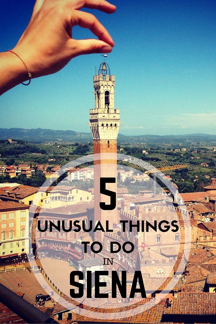 Italian Florence: Siena Off-the-beaten Path In 5 Unusual Things To Do