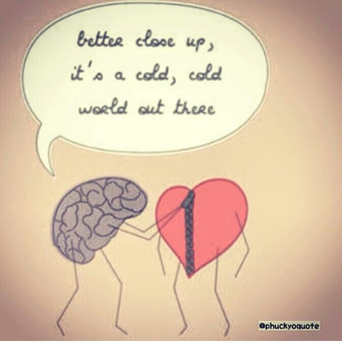 Smart Brain Foolish Heart Chistes Quotes Heart Brain Quotes
