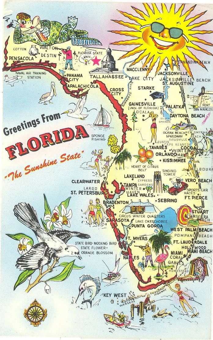 Map Of State Of Florida With Cities.Vintage Florida Postcard Greetings From The Sunshine State Map
