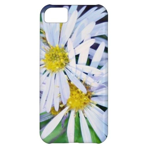Daisy iPhone 5C Case