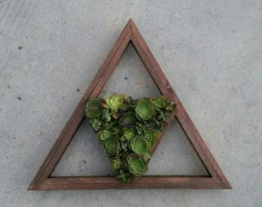 Handmade Succulent Living Wall. 100% Cedar Triangular Hanging Wall Planter  From One With Plants