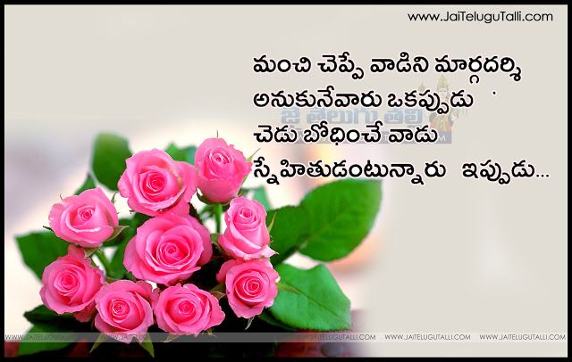 Telugu Friendship Images And Nice Telugu Friendship Life Quotations With Nice Pictures Awesome Telugu Quotes Beautiful Pink Roses Pink Rose Flower Flower Seeds