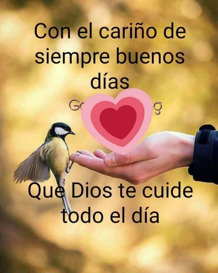 Gracias No Te Olvides De Mi Good Morning In Spanish Good Morning Quotes For Him Good Morning Quotes