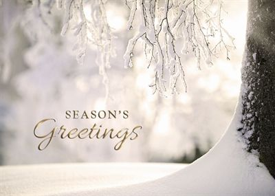 Corporate holiday greetings wall street greetings business corporate holiday greetings wall street greetings business christmas cards business holiday cards m4hsunfo