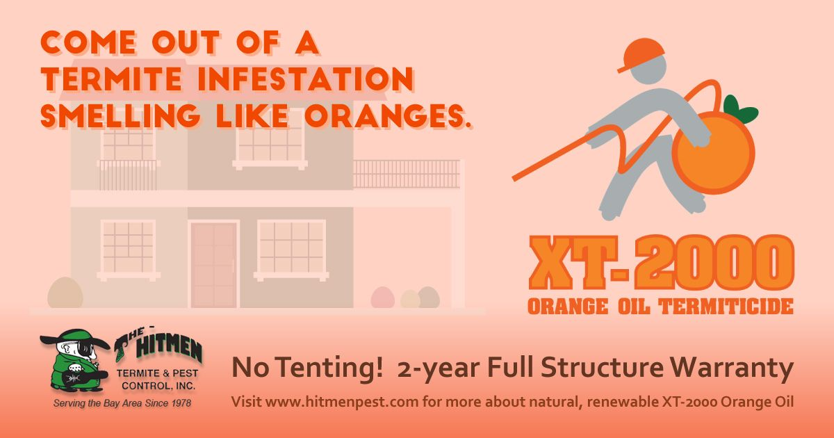 Termites Just Don T Stand A Chance Against D Limonene An Essential Oil Derived From Oranges Find Out More About Xt 2000 Oran Orange Oil Pest Control Termites