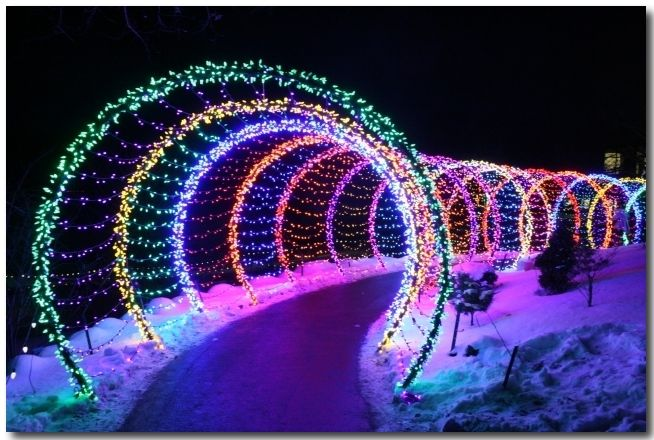 Green Bay Garden Of Lights Green Bay Botanical Gardens Festival Of Lights Winter Christmas