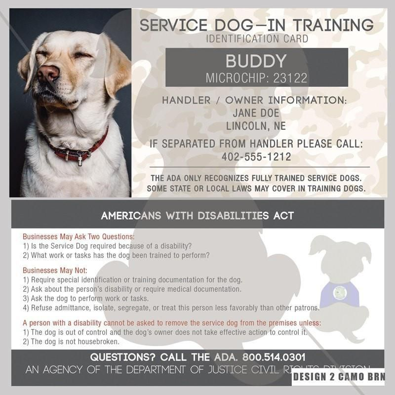 Id Card Service Dog In Training Easiest Dogs To Train Dog