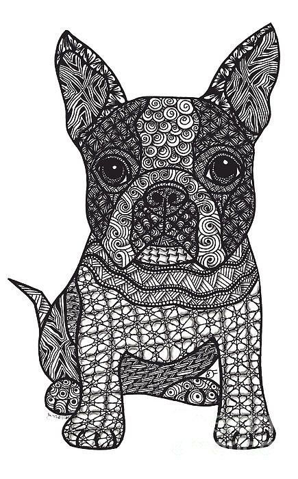 Friend Boston Terrier Print By Dianne Ferrer Boston Terrier Art Dog Coloring Page Zentangle Drawings