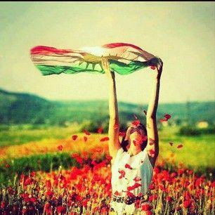 Kurdistan Flag waving   Have a taste of your Kurdish pride with a Kurdistan Flag