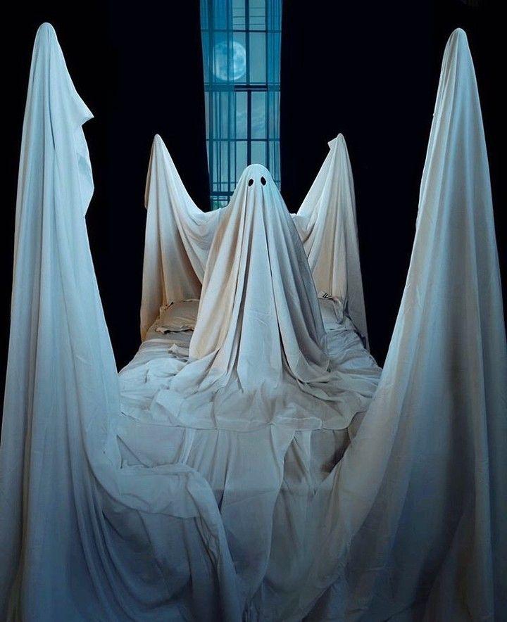 "Kassatex New York on Instagram: ""Sleep with one eye open…..Happy Halloween kiddies. Via @followthenap.  . . . . #kassatexnewyork #justaddkassatex #kassatex #halloween…"""