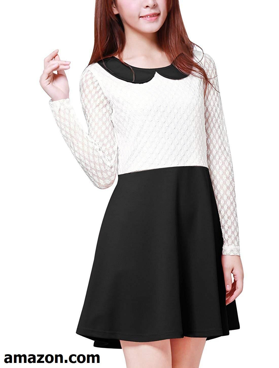c776e7145d26dd Allegra K Women's Doll Collar Mesh Panel Contrast Color Above Knee Dress