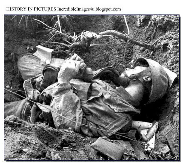 world war 2 dead nazis - Yahoo Image Search Results ...