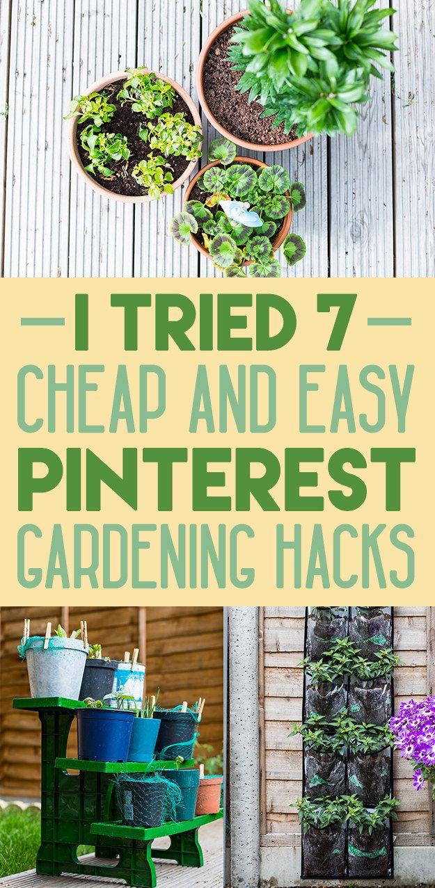 I Tried 7 Pinterest Garden Hacks For Beginners Gardening For