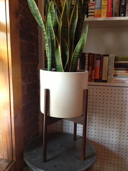 Modern Ceramic Plant Pot W Wood Stand In Bedford Stuyvesant New York Apartment Therapy Classifieds