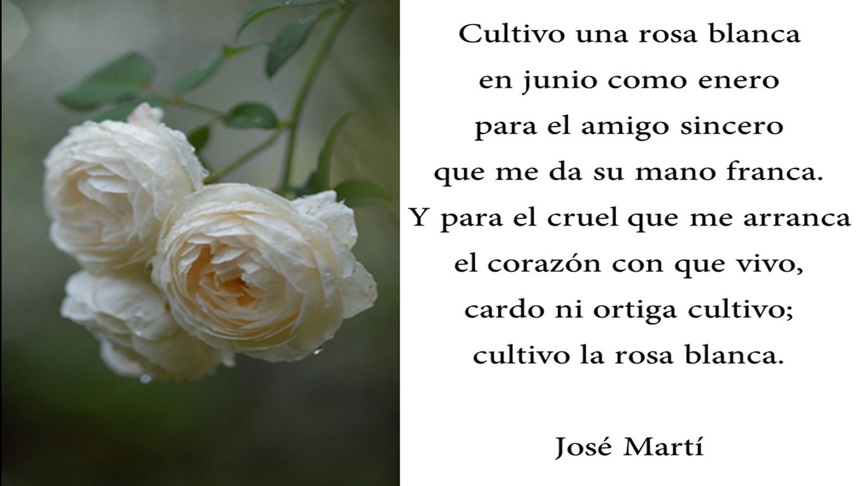 Cultivo una rosa blanca en junio como en enero... José Martí