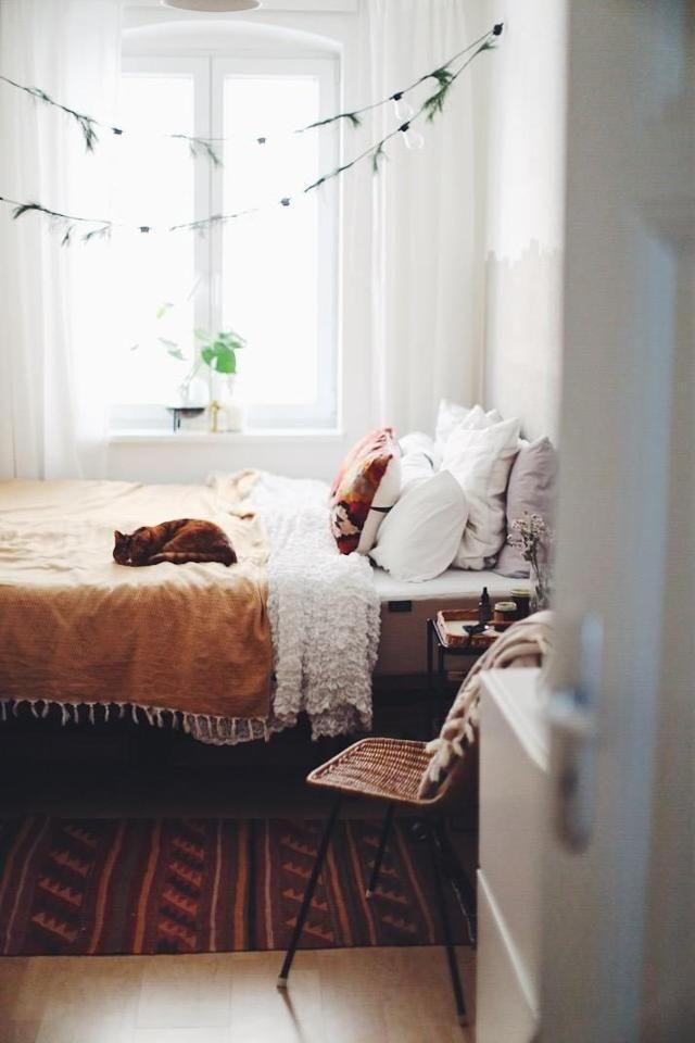 catsandinterior #schlafzimmer #tigerthecat Schlafzimmer