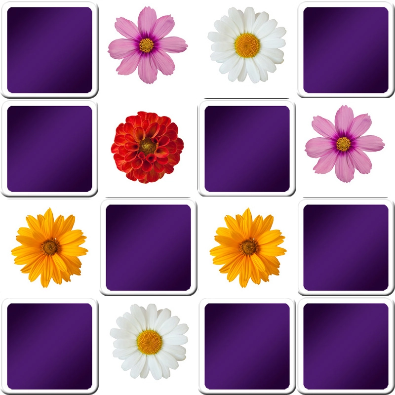 Memory flowers game for seniors, free online game for
