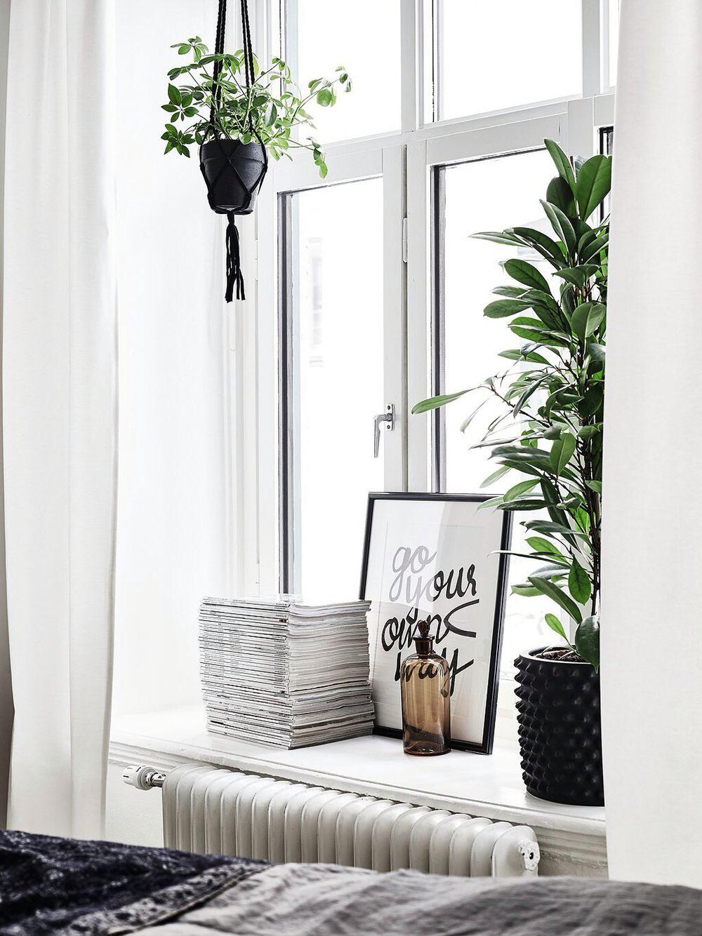 pinterest: bellaxlovee ✧☾  Indoor decor, Home decor, Window