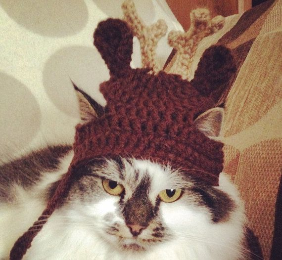 Crochet Pattern - PDF Download // Cat or Small Dog Christmas Beanie ...