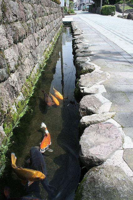 Carp Streams Shimabara Japan Fish Pond Gardens Pond