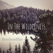 In The Wilderness https://records1001.wordpress.com/