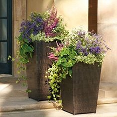 Like The Planters Outdoor Living Pinterest Planters Garden