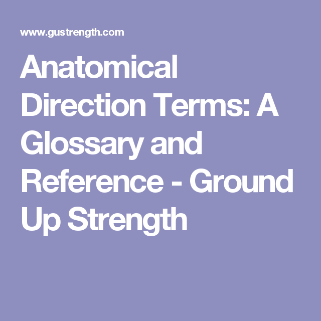 Anatomical Direction Terms: A Glossary and Reference - Ground Up ...